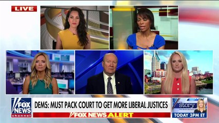 McEnany warns court expansion will lead to 'one-party rule'