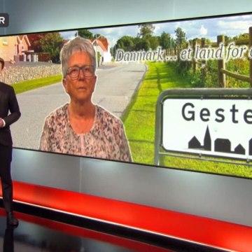 Gesten planlægger parade for mangfoldighed | Nick Højgaard | Vejen | 20-08-2017 | TV SYD @ TV2 Danmark