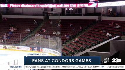 Fans at Condors Games