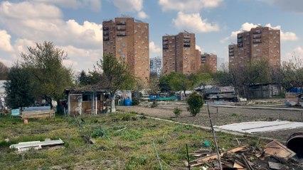 «On veut des potirons, pas du béton», scandent les défenseurs des jardins ouvriers d'Aubervilliers