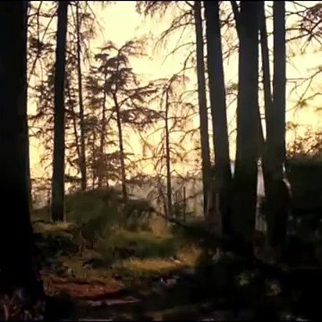 Mystery Skulls - Paralyzed (2012)