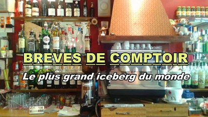 Brèves de comptoir - Disparition du plus grand iceberg du monde