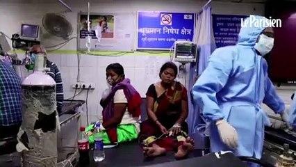 """B.1.617, le variant """"double mutant"""" qui fait exploser l'épidémie en Inde"""