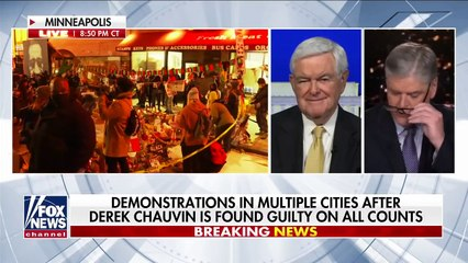 Newt Gingrich Democrats undermining the ability of police to function