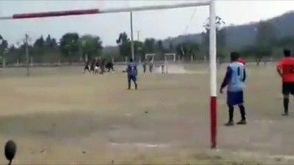 Quand un taureau provoque la suspension d'un match de foot