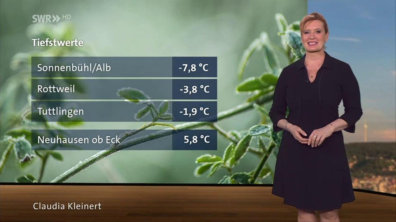 Claudia Kleinert Hot Dress - video dailymotion