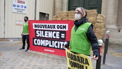 Nouveaux OGM : l'ONG Greenpeace installe un mur de paille devant le ministère de la Transition écologique