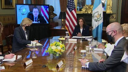 Harris meets with Guatemalan president to discuss immigration