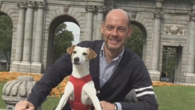 Pipper, el perro 'influencer'