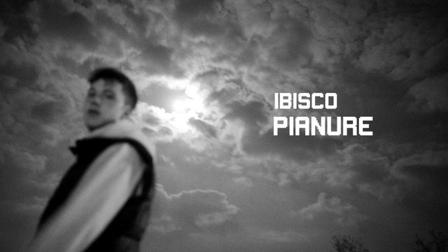 Ibisco - Pianure