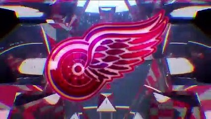 Nhl Tonight:  Red Wings Future:  The Crew Believes The Red Wings' Future Is Promising  Apr 3,  2019