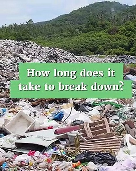 How Long Does It Take To Break Down Plastic (How To Save ...