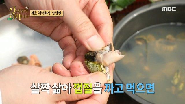 [HOT] Cat shellfish & turtle hands stuck between rocks., 안싸우면 다행이야 210503