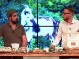 Les fromages fermiers des biquettes du Serton - Appétit - TL7, Télévision loire 7