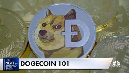 Dogecoin 101