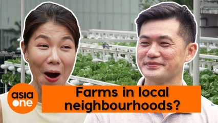 GreenHome Ep 2: Food Security