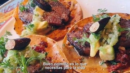 Conoce las delicias de COLMILLO   CHILANGO
