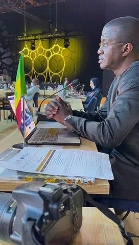 International Participant meeting (IPM) DUBAI 2020 : L'intervention du Dr Malick DIOP