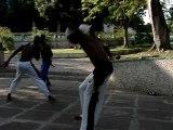 Capoeira bresil