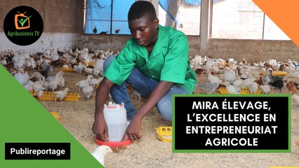 Burkina Faso : MIRA ÉLEVAGE, l'excellence en entrepreneuriat agricole