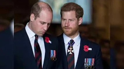 Prince Harry and William 'no longer talking' to each other after 'frosty' reunion
