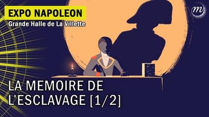 Napoléon et la mémoire de l'esclavage (1/2)