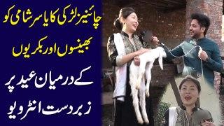 Chinese larki ka Yasir Shami ko bhenson aur  bakriyon k darmeyan Eid pr zabardast interview...