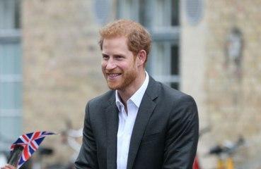Prinz Harry: Er will den Kreislauf durchbrechen