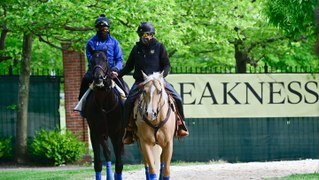 Preakness Stakes Post Positions and Early Odds