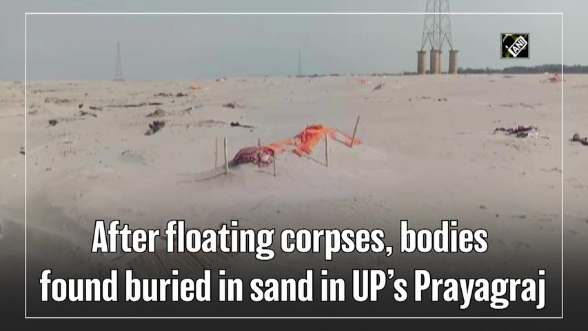 After floating corpses, bodies found buried in sand in UP's Prayagraj