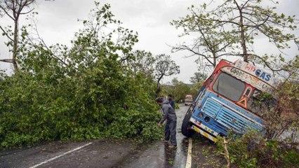Heavy rains lash Mumbai, tree uproots due to cyclone