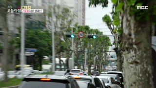 [INCIDENT] The tree that hit the motorcycle?, 생방송 오늘 아침 210518
