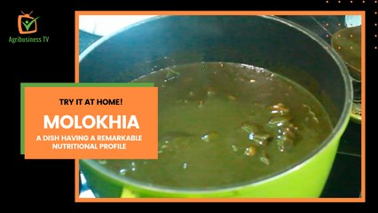 Try it at home: Molokhia, a dish having a remarkable nutritional profile