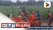 PCG, tumulong sa evacuation at rescue ops sa ilang lugar sa Visayas na nalubog sa baha dahil sa bagyong Dante