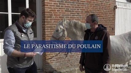 Le parasitisme du poulain