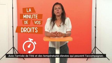 La minute de vos droits - Quelles sont les obligations de l'employeur en cas de fortes chaleurs ?