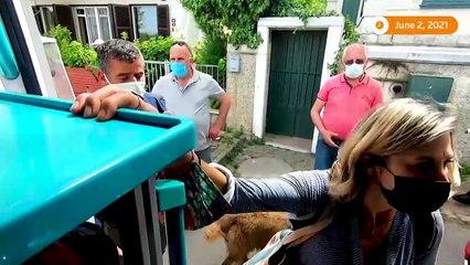 Dog runs after ambulance with owner inside