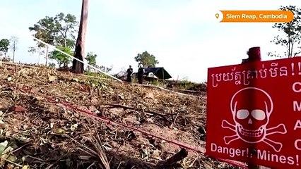 Cambodia's landmine-sniffing 'hero' rat is retiring