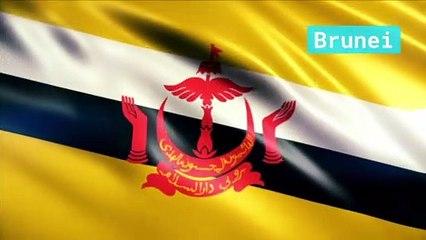 Les pays d'Asie et leur drapeau