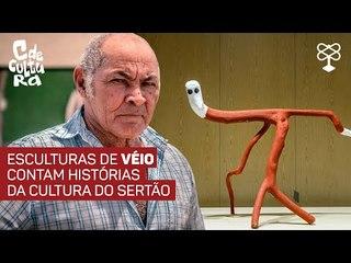 Artista do Sergipe transforma madeira morta em arte