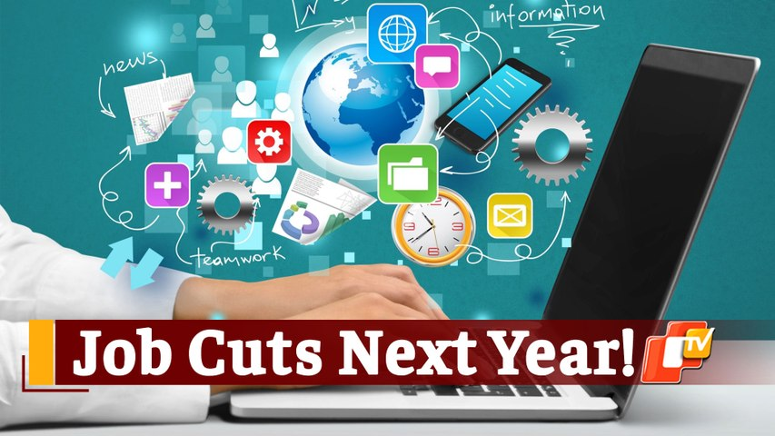 '30 Lakh Job Cuts In TCS, Infosys, Wipro, Cognizant, HCL, Tech Mahindra, Other IT Companies'