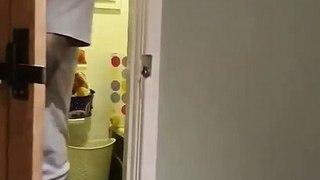 Leur chien leur ramène un petit cadeau : écureuil momifié dans la maison