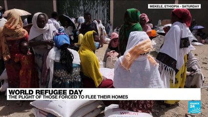 World refugee day: the plight of those forced to flee their homes