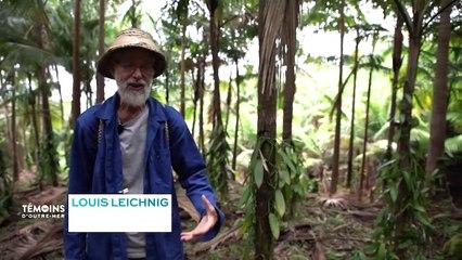 La Réunion - L'excellence de la vanille bourbon