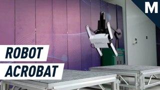 Tiny robot acrobat uses tail to do backflips