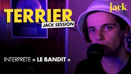 Terrier - Le bandit l LIVE