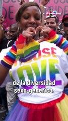 Estas son las banderas del movimiento LGBTQIA+