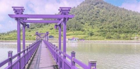 Corée du Sud : îles totalement peintes en violet, l'opération marketing pour attirer les touristes