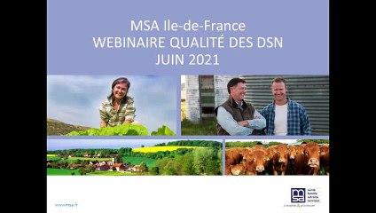 Webinaire Qualité des DSN - 25 juin