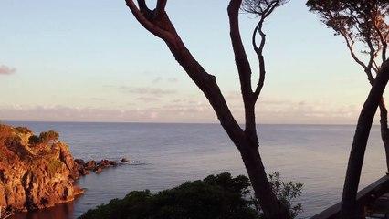 Max Mara Resort 2022 Film
